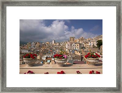 Potted Plants On The Ledge Framed Print by Panoramic Images