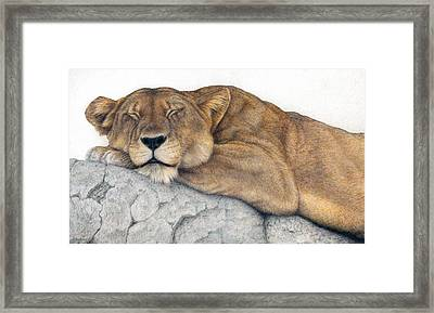 Power And Grace At Rest Framed Print by Pat Erickson