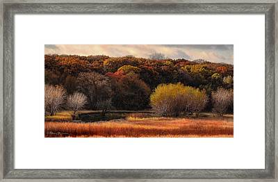 Prairie Autumn Stream Framed Print by Bruce Morrison