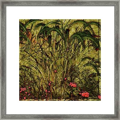 Prairie Grass Framed Print by Barbara Berney