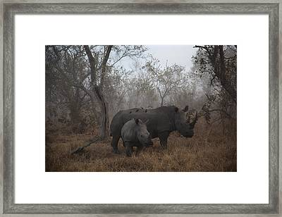 Pre Dawn Encounter Framed Print by Andre Victor