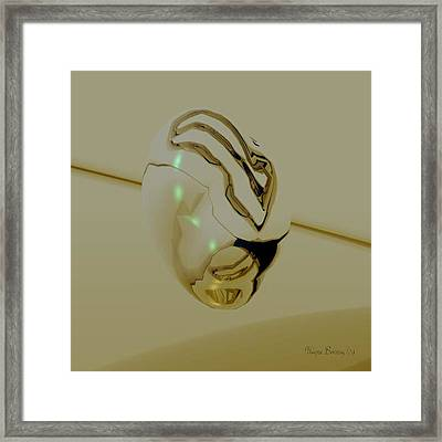 Precious Jewelery Framed Print by Wayne Bonney