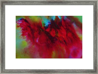 Crimson Passion Framed Print by  Sharon Ackley