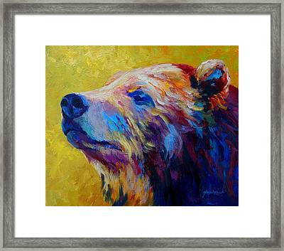 Pretty Boy - Grizzly Bear Framed Print by Marion Rose