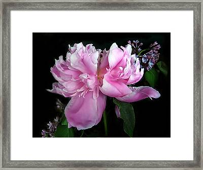 Pretty In Pink Framed Print by Jessica Jenney