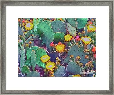 Prickly Pear Cactus 2 Framed Print by Methune Hively