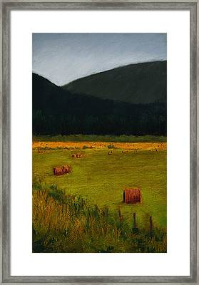 Priest Lake Hay Bales Framed Print by David Patterson