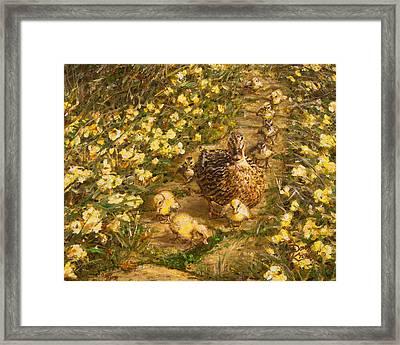 Primrose Path Il Framed Print by Doug Kreuger