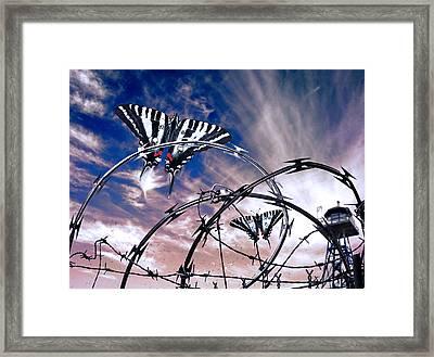 Prison Butterflies Framed Print by Rick Mosher