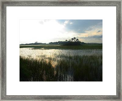 Private Palm Island Framed Print by Susanne Van Hulst