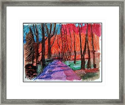 Private Road Framed Print by Don Schaeffer