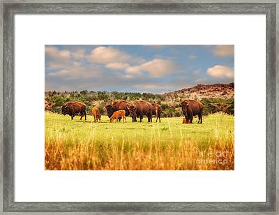 Protecting The Young Framed Print by Tamyra Ayles
