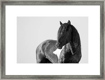 Proud Warrior Framed Print by Sandy Sisti
