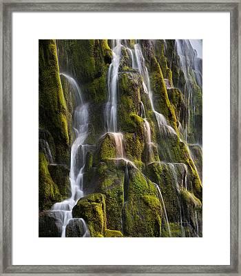 Proxy Falls Textures Framed Print by Leland D Howard