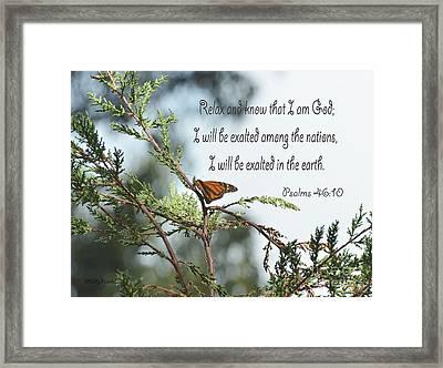 Psalms 46  10 Framed Print by Debby Pueschel