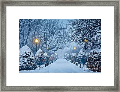 Public Garden Walk Framed Print by Susan Cole Kelly