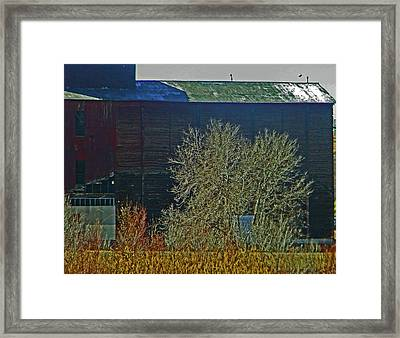 Pueblo Downtown-sweeny Feed Mill 6 Framed Print by Lenore Senior