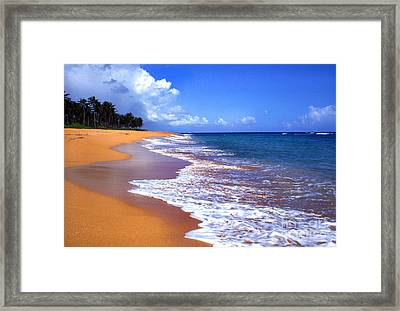 Puerto Rico Shoreline Along Pinones Framed Print by Thomas R Fletcher