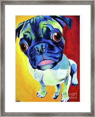 Pug - Lola Framed Print by Alicia VanNoy Call