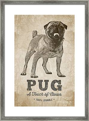 Pug A Touch Of Clown Framed Print by Edward Fielding