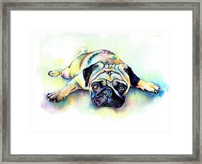 Pug Laying Flat Framed Print by Christy  Freeman