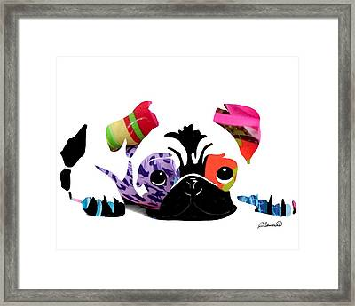 Pug Pup Framed Print by Cindy Edwards