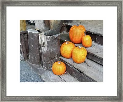 Pumpkin Autumn In Adirondacks Framed Print by Kate  Leikin