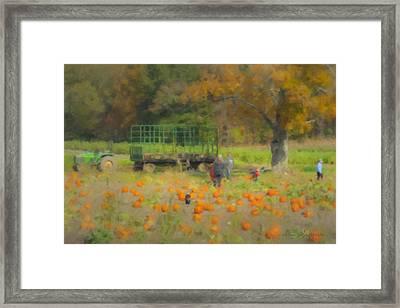 Pumpkins At Langwater Farm Framed Print by Bill McEntee