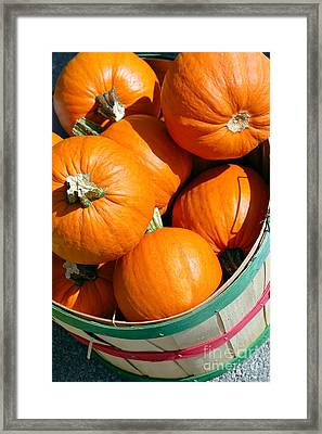 Pumpkins In A Basket Picture Framed Print by Paul Velgos