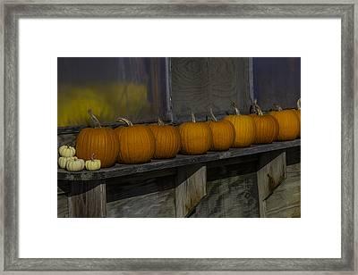 Pumpkins On Shelf Framed Print by Garry Gay