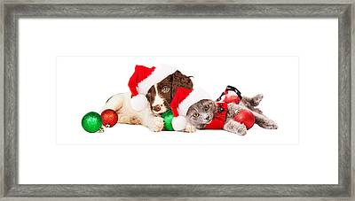Puppy And Kitten Laying With Christmas Ornaments Framed Print by Susan Schmitz