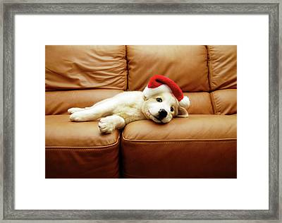 Puppy Wears A Christmas Hat, Lounges On Sofa Framed Print by Karina Santos