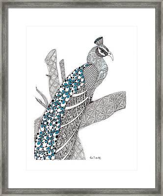 Purdy Peacock Framed Print by Paula Dickerhoff