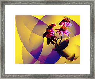 Purple Coneflowers Framed Print by Patricia Motley