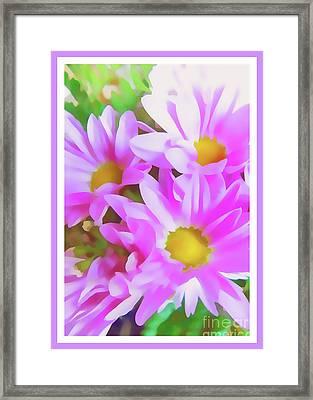 Purple Daisy Poster Framed Print by Susan Lafleur