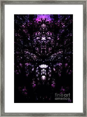 Purple Dreams Framed Print by Nick Gustafson