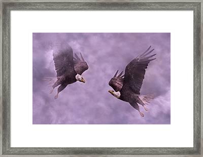 Purple Hearts Framed Print by Betsy Knapp
