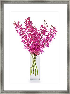 Purple Orchid In Vase Framed Print by Atiketta Sangasaeng