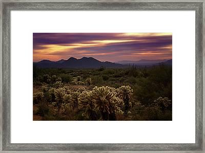 Purple Sonoran Skies At Sunset  Framed Print by Saija Lehtonen