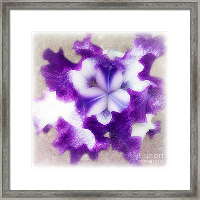 Purple Splash Framed Print by Anita Faye