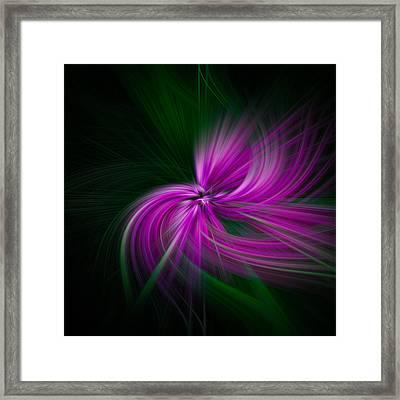 Purple Twirls Framed Print by Noah Katz