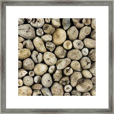 Purpose Framed Print by Susie Frazier