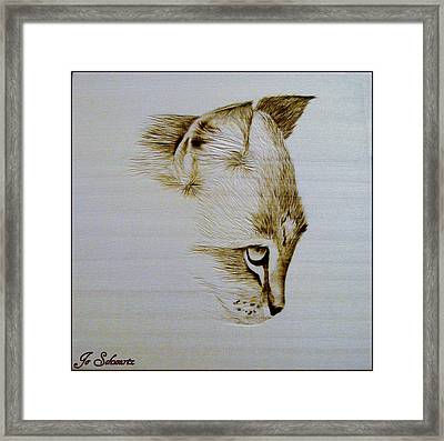 Purrfect Study 2 Framed Print by Jo Schwartz
