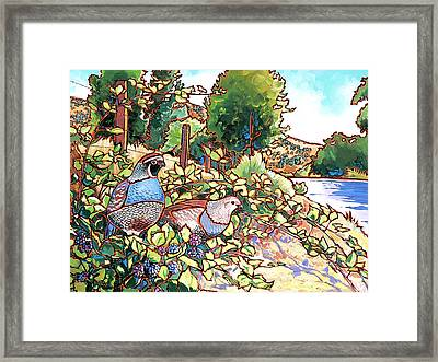Quails And Blackberries Framed Print by Nadi Spencer