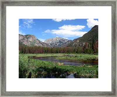 Quiet Framed Print by Amanda Barcon