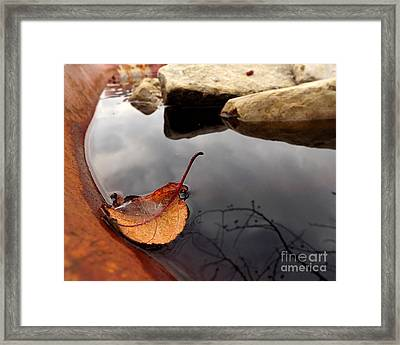Quiet Corners  Framed Print by Viviana  Nadowski