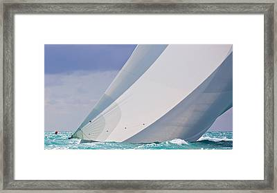 Quiet Drama Framed Print by Steven Lapkin