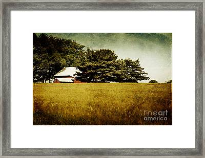 Quiet Framed Print by Lois Bryan