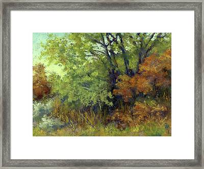 Quiet Moment Framed Print by David King