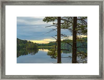 Quiet Morning Framed Print by Karol Livote